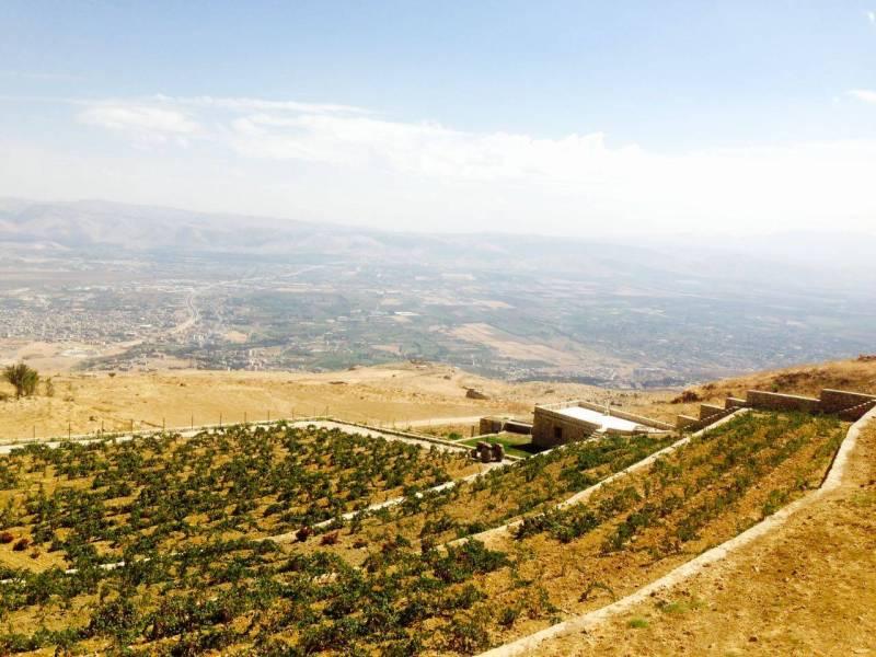 Désormais, les nouveaux vignobles du Liban cherchent l'altitude pour trouver davantage de fraîcheur