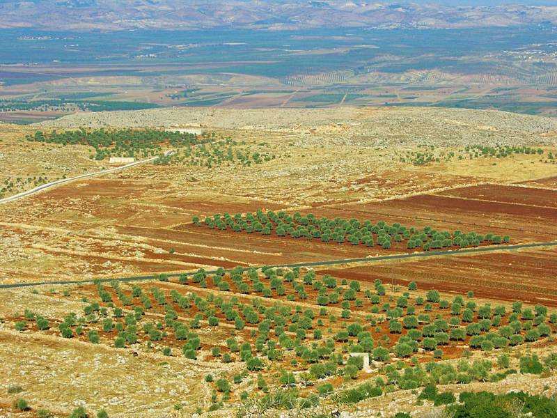 Malgré une certaine stabilisation, l'agriculture syrienne reste dans une situation dramatique
