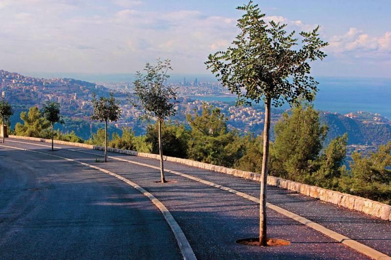 Roland Abdeni : «Les Libanais se tournent à nouveau vers la terre»