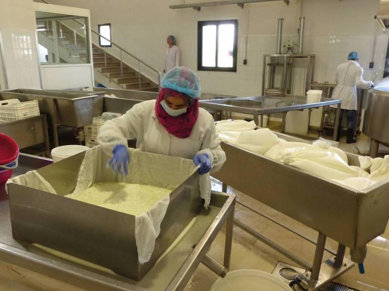 Selon les chiffres communiqués par  Go Baladi, le secteur du lait de chèvre représente aujourd'hui un chiffre d'affaires de 6 millions de dollars.